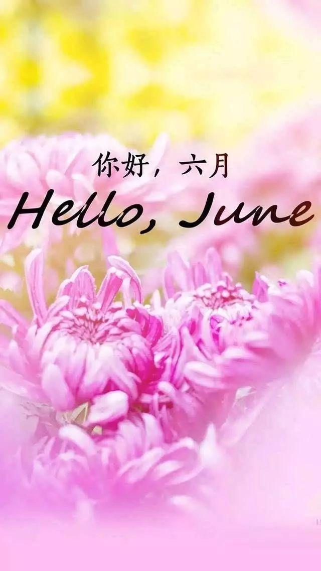 5月再见,6月你好!