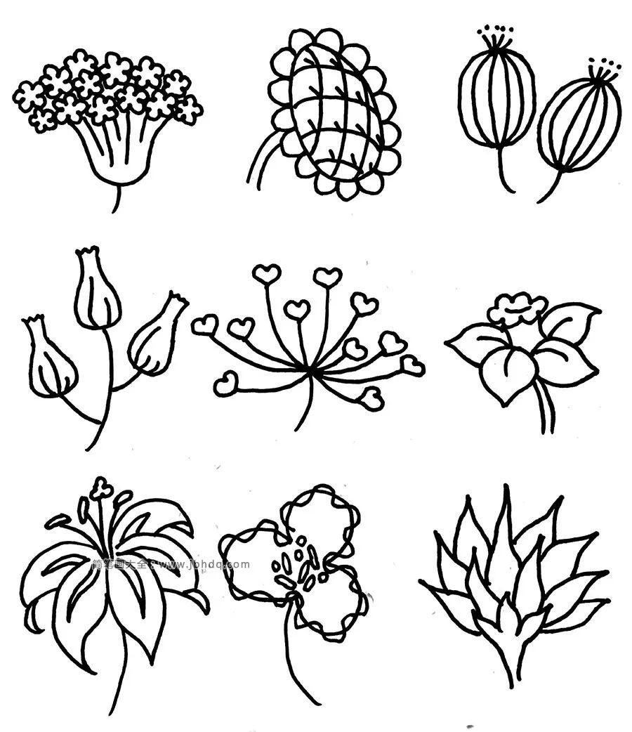 100多种适合入门学习的针管笔花卉,好实用的素材