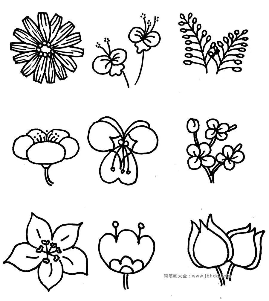 花朵简笔画手绘手帐素材,有需要的就拿去吧 简笔画 花朵 素材 新浪新闻