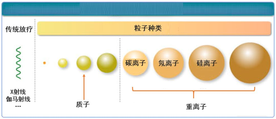 质子治疗和重离子治疗技术有什么区别?插图1