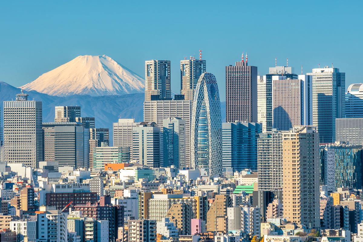 东京经济总量等于孟买_孟买猫