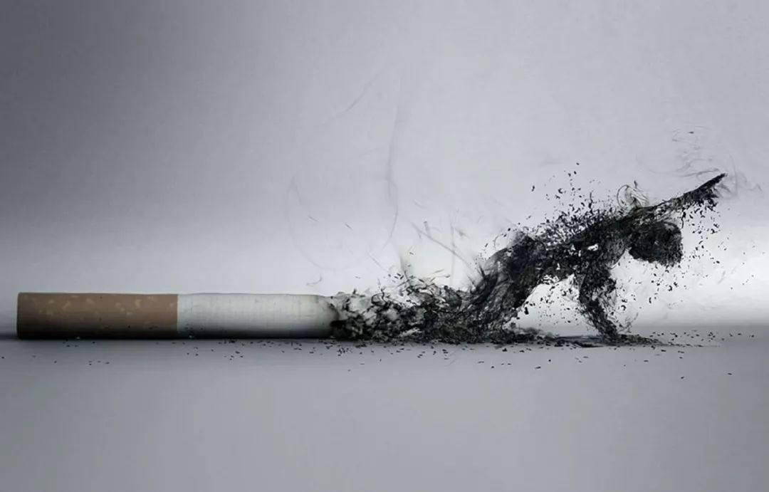科普视频 | 世界无烟日后,我们和您谈谈肺癌