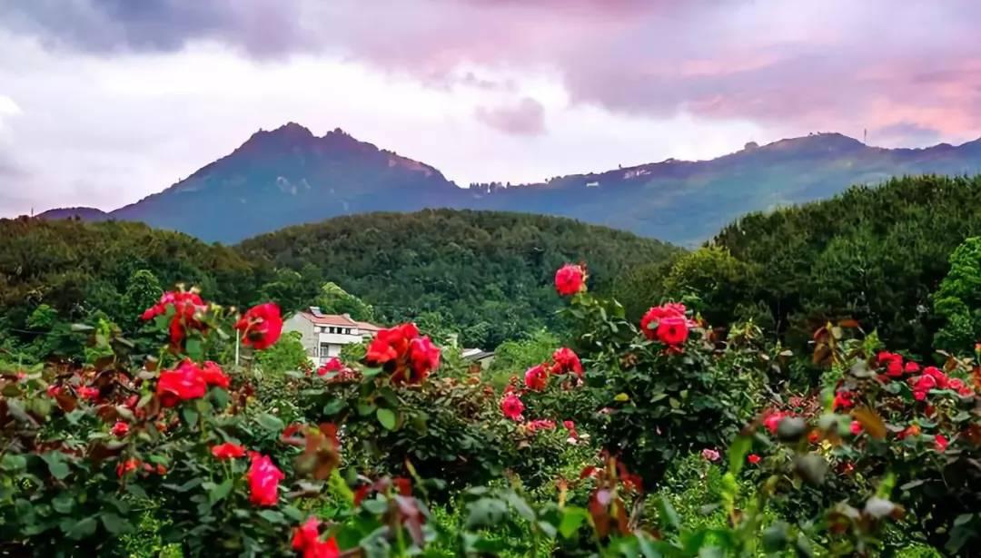 花木兰从军后隐居在五百多米的山里,现在山里建满了宫殿