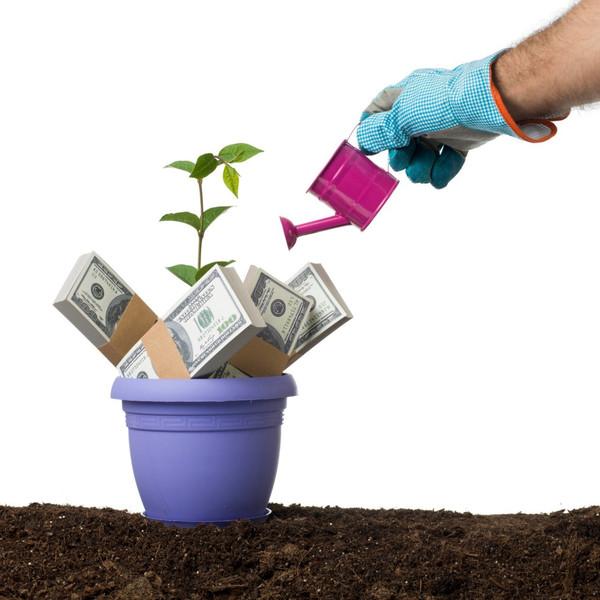 如何劝说已经购买不靠谱理财项目的家人退出?