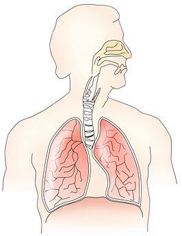 喉咙里总是有痰,当心是支气管扩张!一旦发生就不可逆,严重者甚至心衰!
