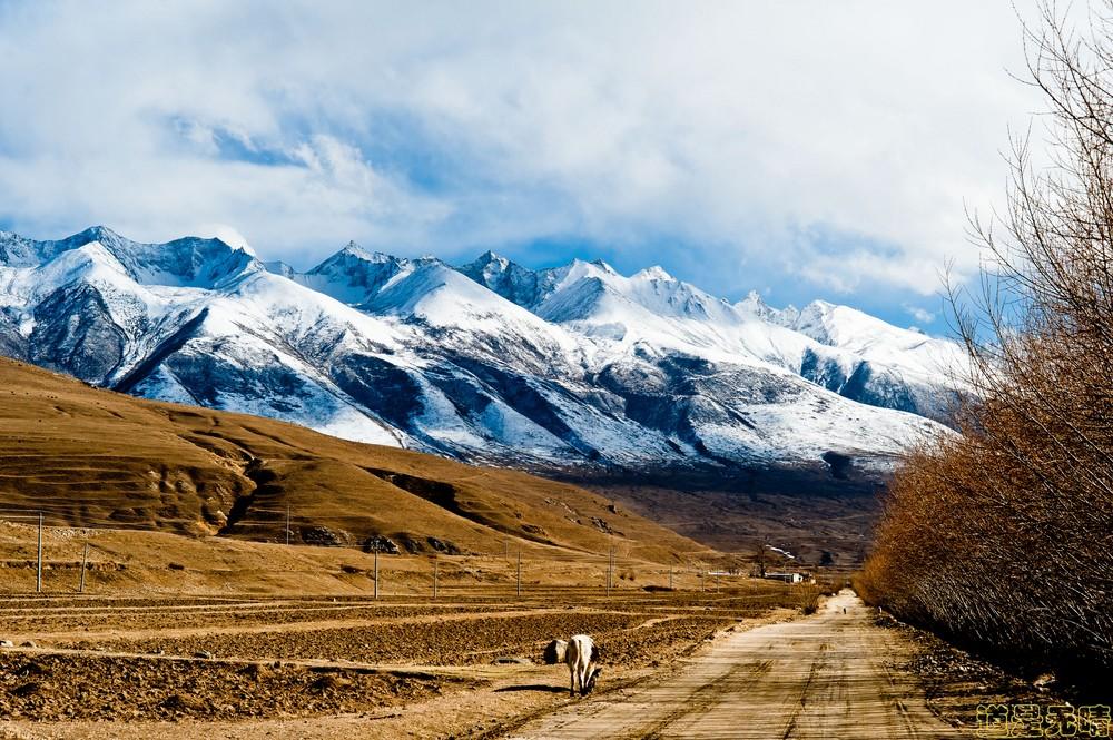 自驾拼车去西藏不知道四季该怎么穿?