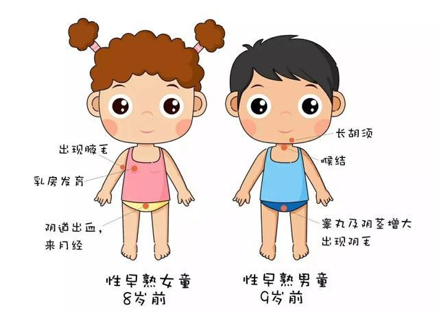 女孩——在8岁以前出现乳房发育,小阴唇变大,出现阴毛,来月经,子宫