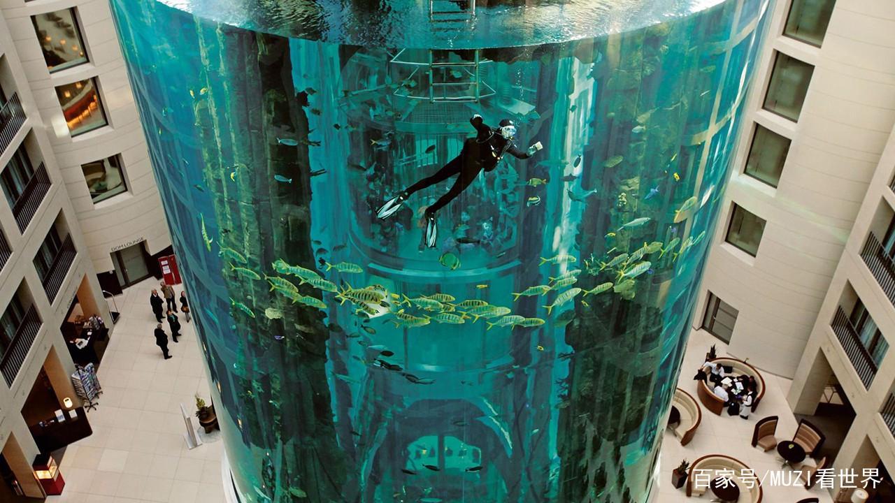 土豪耗资近1亿在酒店中建最大鱼缸每年吸引数十万游客! 西安水族批发市场 西安龙鱼第6张