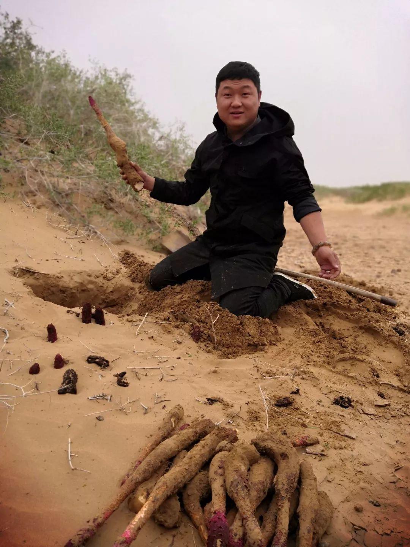 刘流的老婆马兰照片