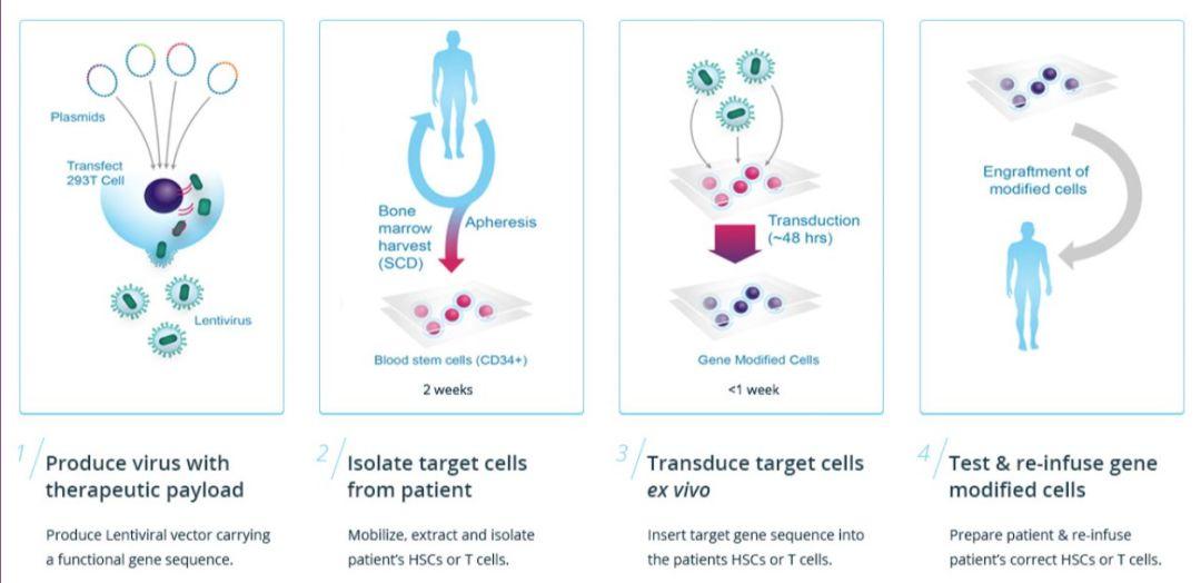 欧盟批准基因疗法 Zynteglo(LentiGlobin):价格180万美元