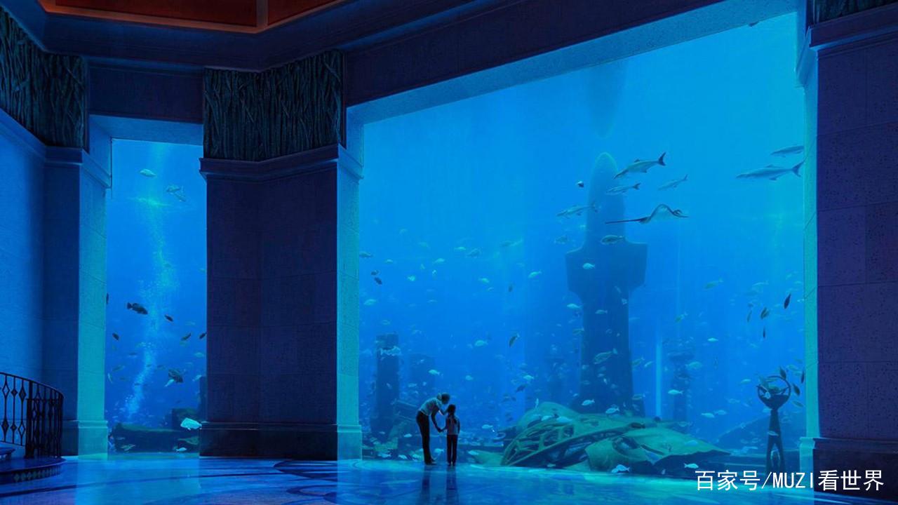 土豪耗资近1亿在酒店中建最大鱼缸每年吸引数十万游客! 西安水族批发市场 西安龙鱼第1张