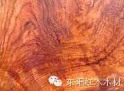 龙虎时时彩研究群:2020北京公务员考试行测常识判断练习题(142)