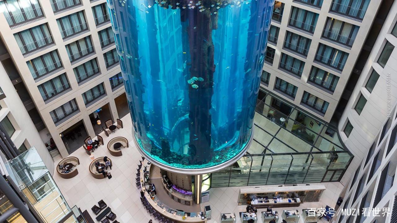 土豪耗资近1亿在酒店中建最大鱼缸每年吸引数十万游客! 西安水族批发市场 西安龙鱼第3张