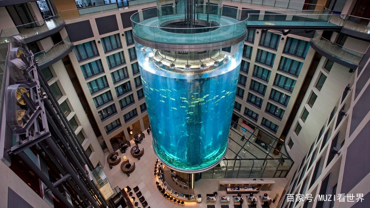 土豪耗资近1亿在酒店中建最大鱼缸每年吸引数十万游客! 西安水族批发市场 西安龙鱼第2张