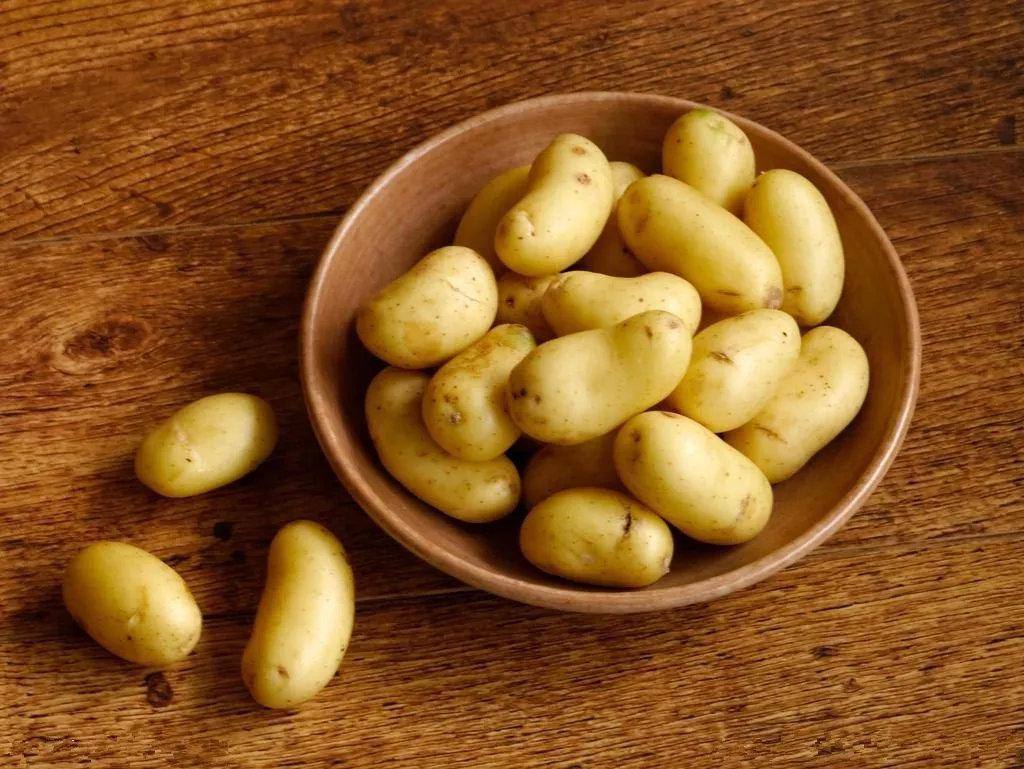 都知道土豆发芽了产生毒素,那葱姜蒜、花生、红薯、芋头等其他植物呢?
