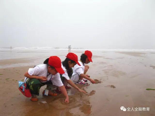 全人全脑教育第19期暑期快乐营开始报名