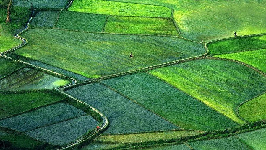 惬意生活,山水田园 ,过一个婺源本土的端午 习俗