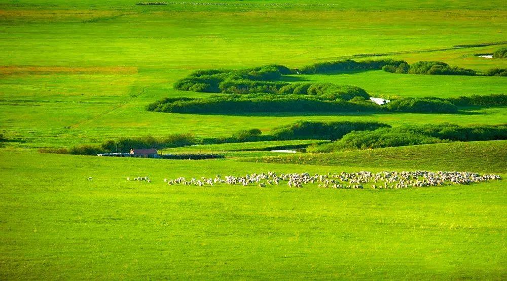 乌拉盖草原——天边的草原