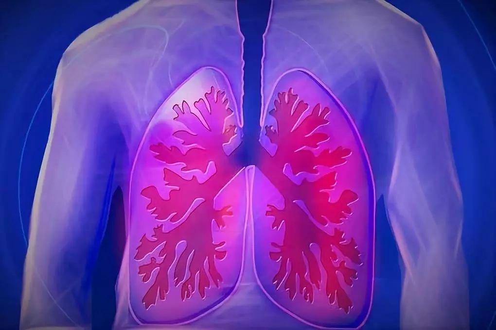 肩膀痛就是关节病?小心是肺癌最后一次报警!4个关键症状要分清