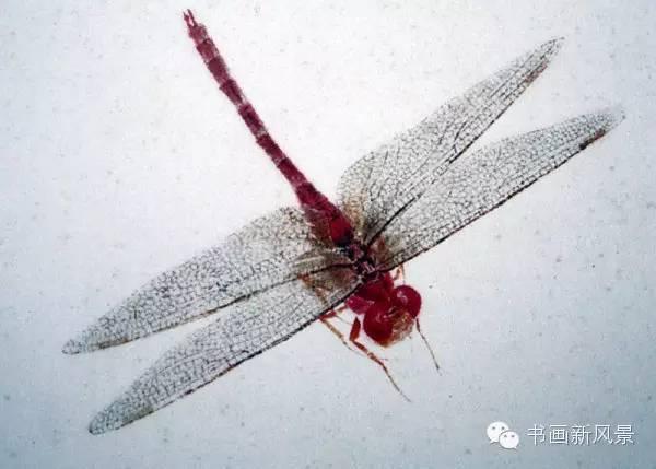 冰棍手工制作蜻蜓