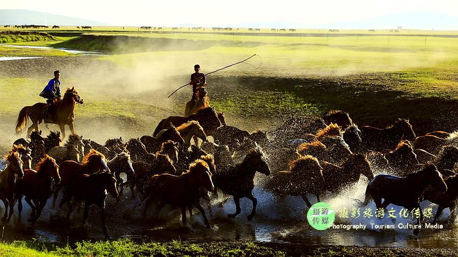 呼倫貝爾嶺東自駕民俗森林風光體驗游