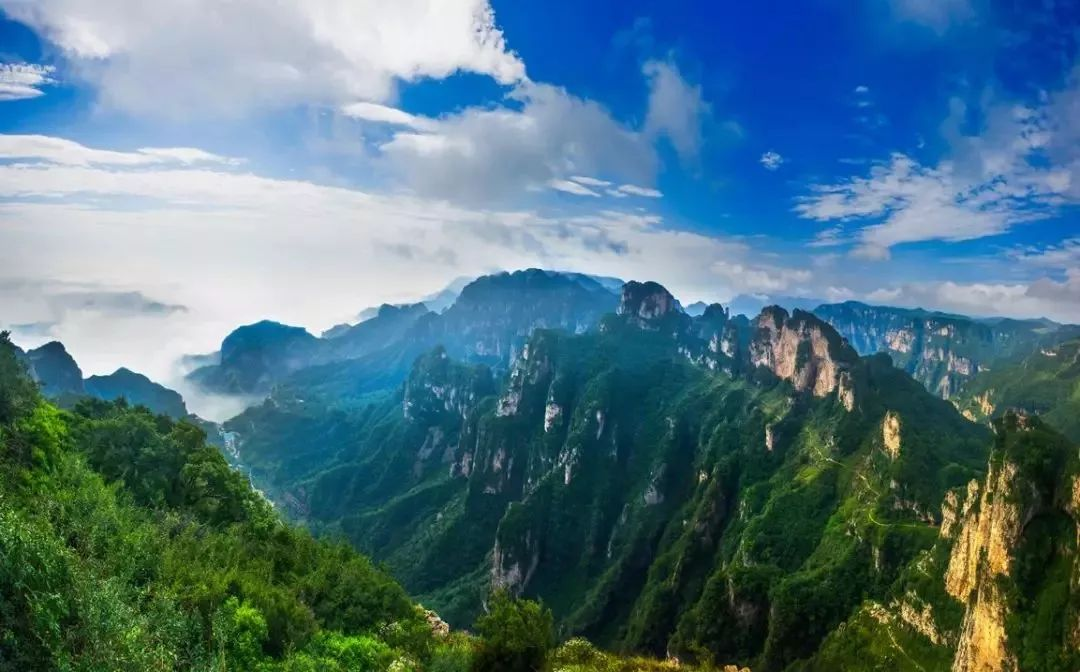 奇峰、云海、怪石、松涛 太行山把最美的风光给了南太行 而当代诗坛领袖李锐却说 不登王莽岭,岂识太行山 天下奇峰聚,何须五岳攀