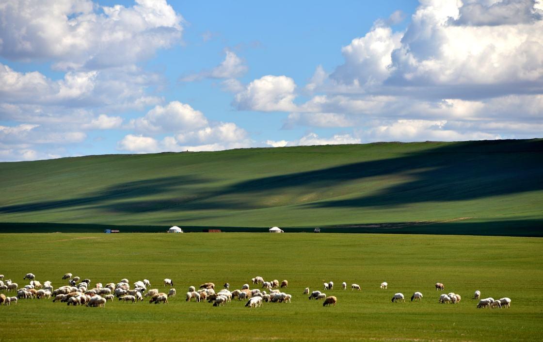 内蒙古呼伦贝尔大草原