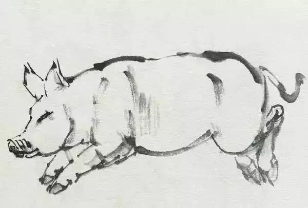 4.调淡赭石沿着猪身体的结构勾勒,并在身体结构部分侧锋用笔着色。  范例2: 1.调重墨中锋用笔勾勒出头部和前肢,结构转折处侧锋用笔擦出。  2.接着顺势勾勒出背部、臀部和后肢部分,注意四肢关节处的转折。  3.进一步完善四肢和腹部结构,并勾出腹部的乳头,以突出母猪的特点。而后调稍干的中墨在四肢和腹部结构转折处适当皴擦,表现出整体的结构和层次。  4.