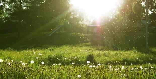 品读 贺新郎夏景 ,美人孤眠于盛夏的情景,苏轼写得很美