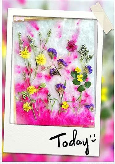 活动预热丨怎么diy一张花草纸?