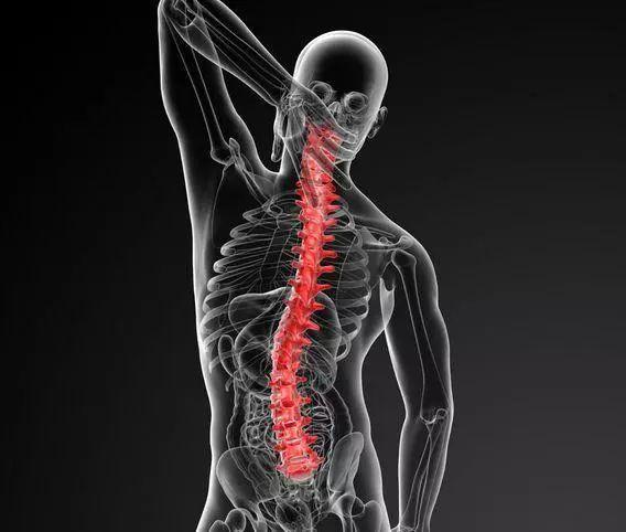 【中医科普】强直性脊柱炎还有哪些表现?