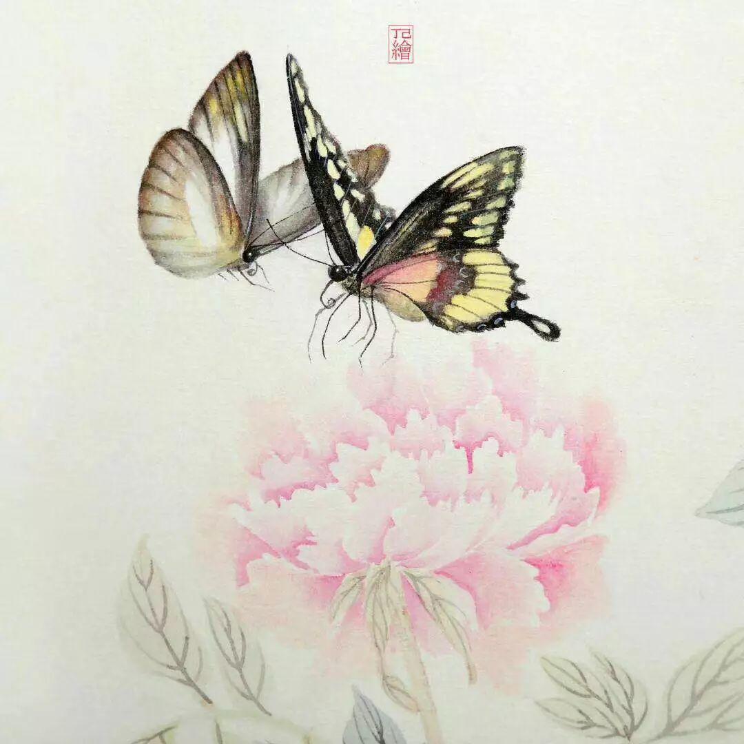 工笔蝴蝶笔画法步骤