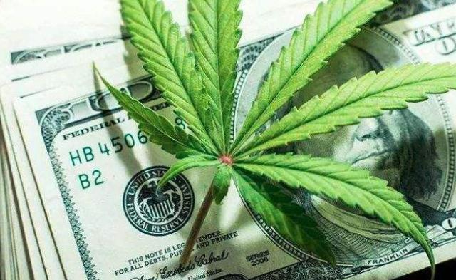 貿易摩擦持續,部分美國農民放棄大豆改種大麻