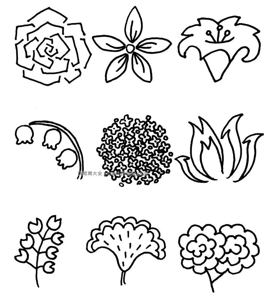 100多种入门针管笔花卉,好实用的素材