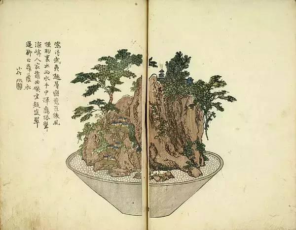 景观 盆景,一座微观的自然山水