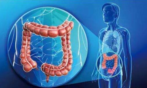 """苹果是保护肠胃的冠军,可晚上吃会变成""""毒苹果""""?给大家说清楚"""