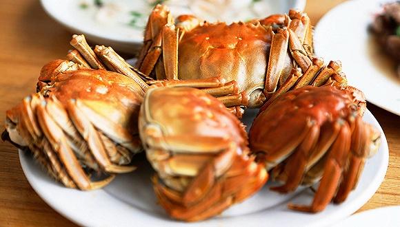 【天下奇闻】比利时大闸蟹泛滥要还给中国人 墨西哥总统请小扎帮穷人连网
