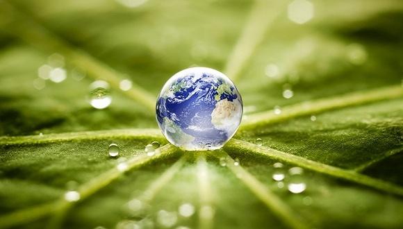 阿里巴巴成交額累計嗎_全國碳排放市場累計成交額達68億元,環境部:要使碳交易成為控制排放的手段