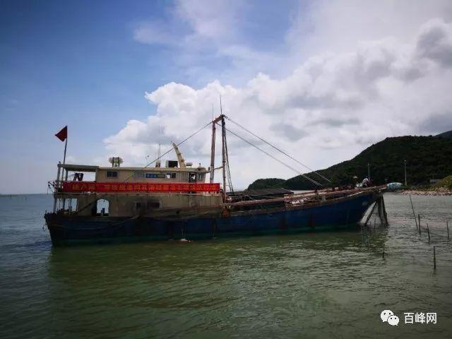 销毁违规渔网渔船,打击非法捕鱼,台山这群人在行动!