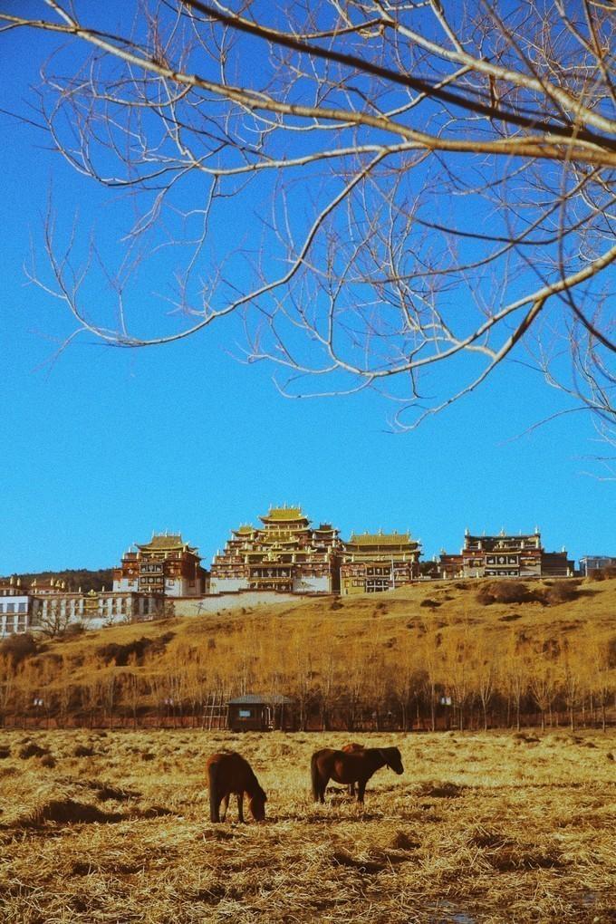 云南,一个从来不会厌倦的旅行地(丽江 泸沽湖 香格里拉闺蜜纯玩旅行)