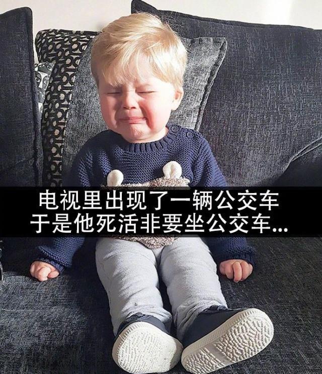 熊孩子各种奇葩的哭闹理由,现在的孩子都这么难哄了吗:为什么叫熊孩子