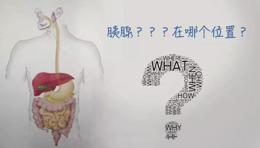[高脂饮食的你,可能在走向这种癌的道路上一去不复返] 脂癌