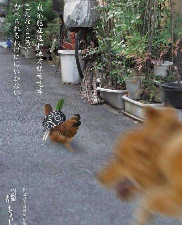 【烧鸟,日本的撸串,离不开一只鸡的捧场】