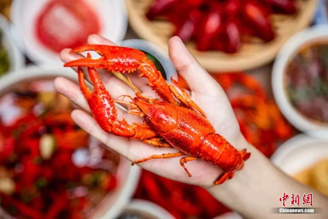 龙虾馆排队7000桌 不吃小龙虾,那还过什么夏天