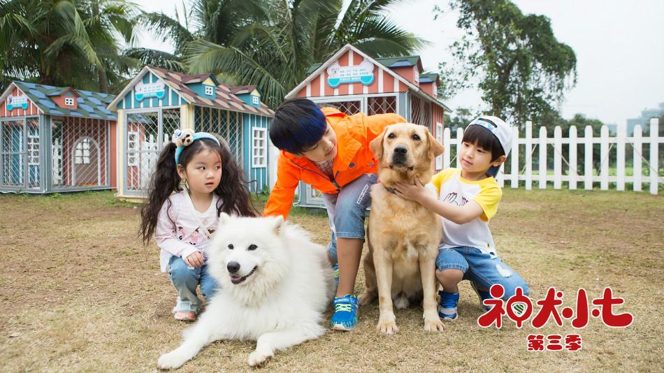 《神犬小七第三季》剧照