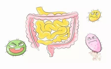 科普乐享牛牛棋牌,开元棋牌游戏,棋牌现金手机版视频 | 热衷高蛋白、高脂饮食,小心大肠癌