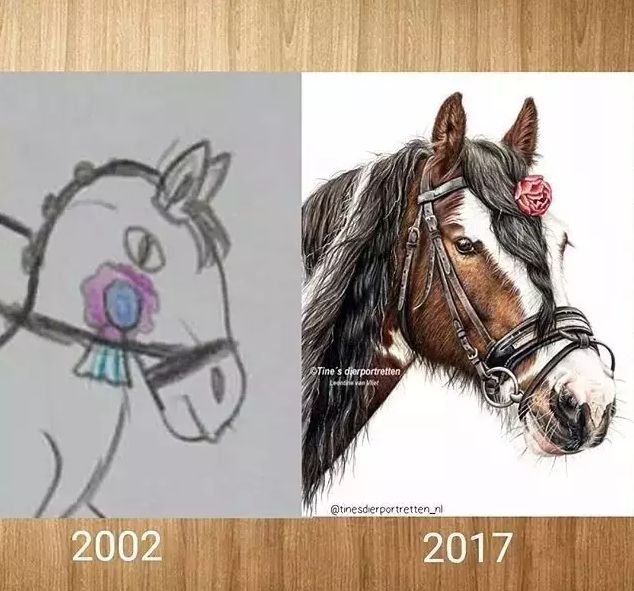 一匹马画了16年,23岁美女学渣人生逆风翻盘