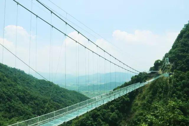 """周末嗨起来!广东11个""""网红""""玻璃桥打卡点推荐东莞有2个…(图15)"""