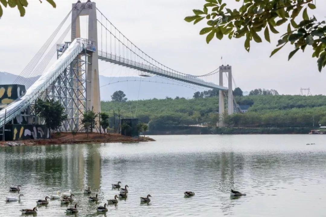 """周末嗨起来!广东11个""""网红""""玻璃桥打卡点推荐东莞有2个…(图8)"""
