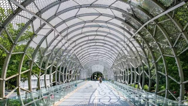 6月26日 | 深圳大事件_自行車